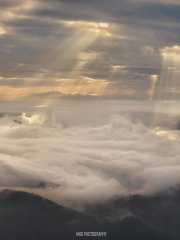 Sea of Clouds and Crepuscular rays